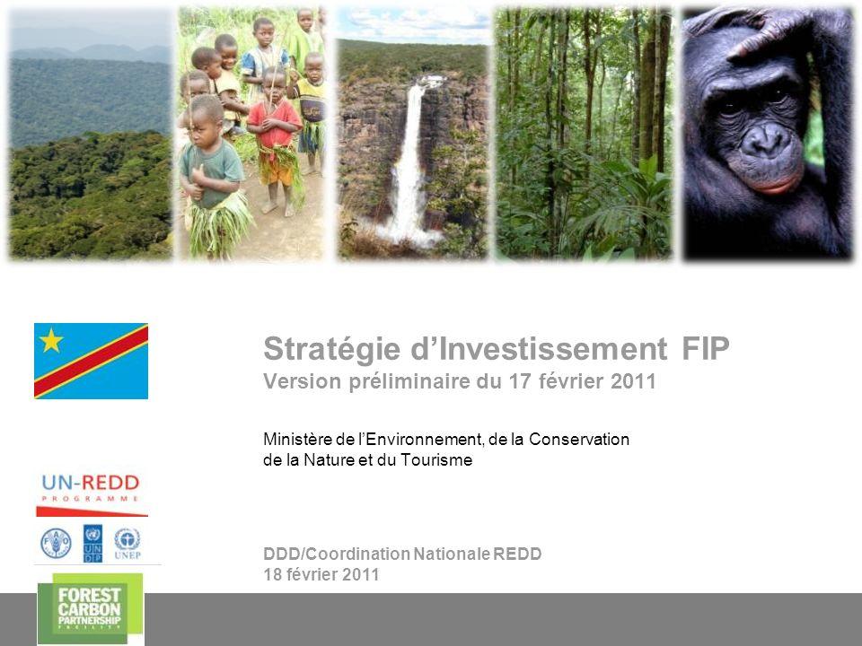 1 Stratégie dInvestissement FIP Version préliminaire du 17 février 2011 DDD/Coordination Nationale REDD 18 février 2011 Ministère de lEnvironnement, d