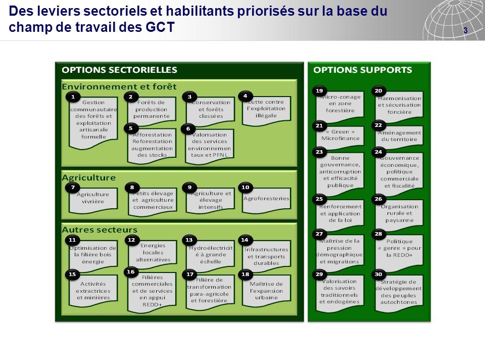 3 Des leviers sectoriels et habilitants priorisés sur la base du champ de travail des GCT
