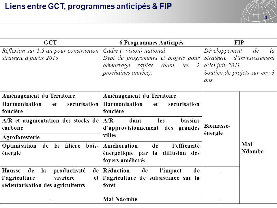 4 GCT6 Programmes AnticipésFIP Réflexion sur 1,5 an pour construction stratégie à partir 2013 Cadre (=vision) national Dvpt de programmes et projets p