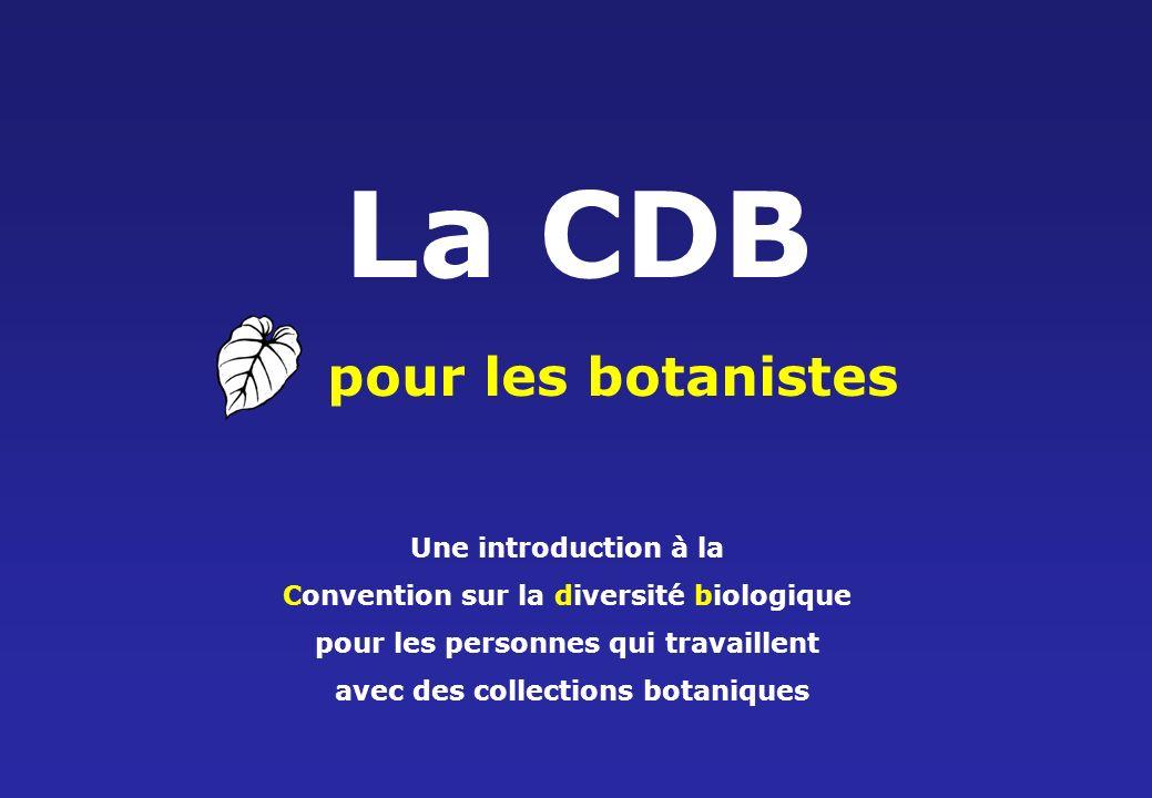 Les institutions botaniques et la CDB Reproduction de plantes menacées Prélèvement de graines pour la conservation ex situ Formation dinspecteurs