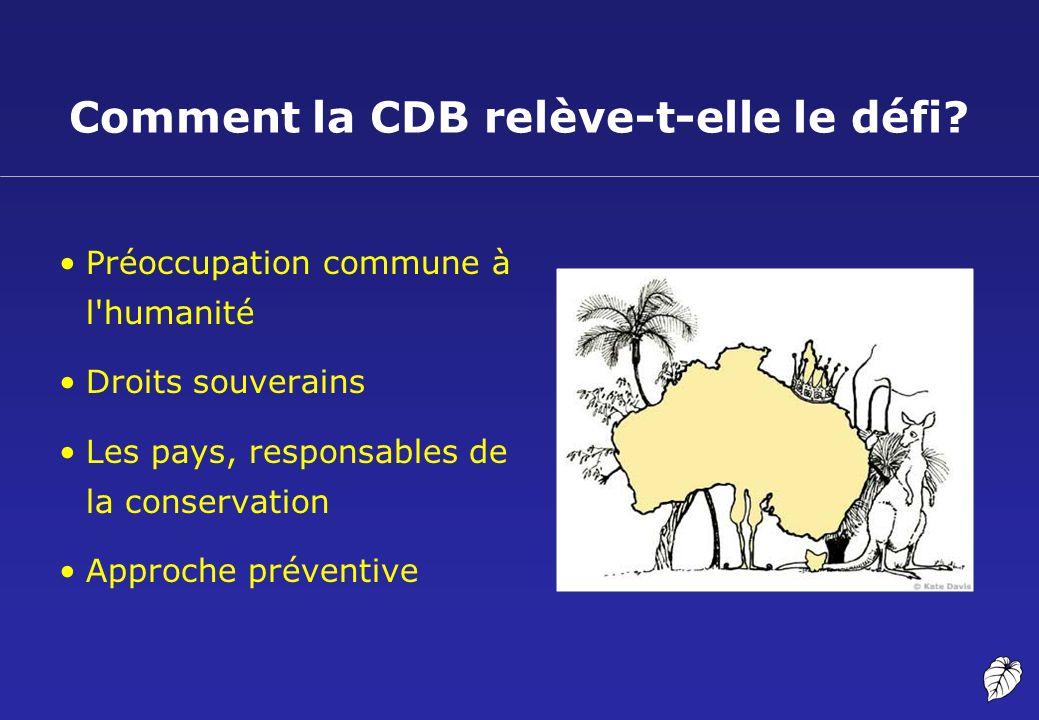 Comment la CDB relève-t-elle le défi? Préoccupation commune à l'humanité Droits souverains Les pays, responsables de la conservation Approche préventi