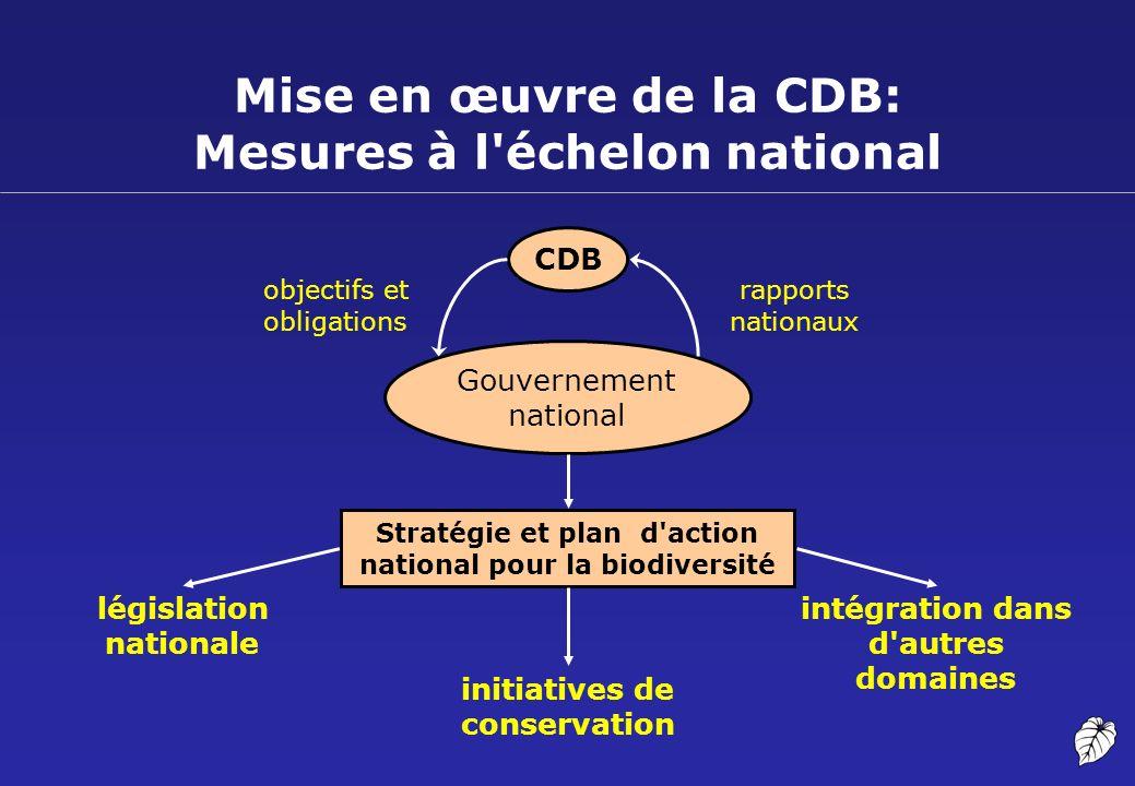 Mise en œuvre de la CDB: Mesures à l'échelon national CDB Gouvernement national législation nationale intégration dans d'autres domaines Stratégie et