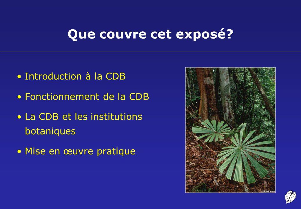 Propriété intellectuelle Voici quelques types de DPI: –brevets –droits d auteur –droits des obtenteurs de variétés végétales La PI et les plantes?