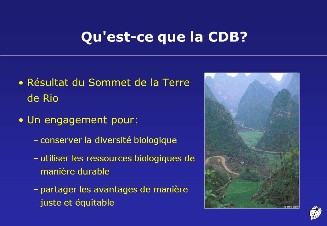Résultat du Sommet de la Terre de Rio Un engagement pour: –conserver la diversité biologique –utiliser les ressources biologiques de manière durable –