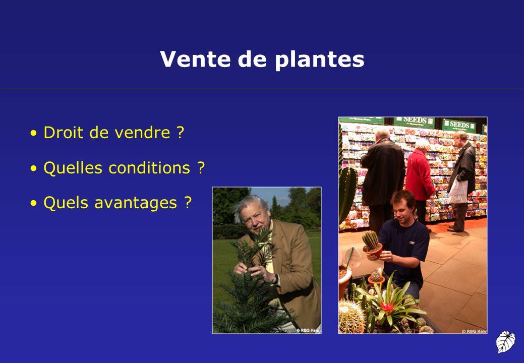 Vente de plantes Droit de vendre ? Quelles conditions ? Quels avantages ?