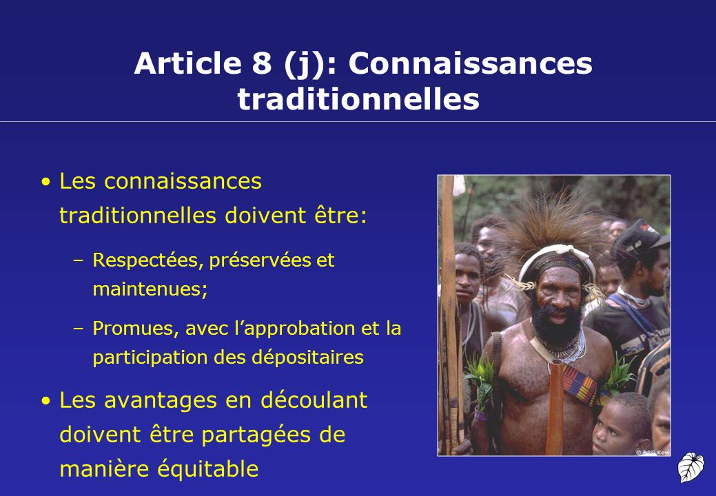 Article 8 (j): Connaissances traditionnelles Les connaissances traditionnelles doivent être: –Respectées, préservées et maintenues; –Promues, avec lap