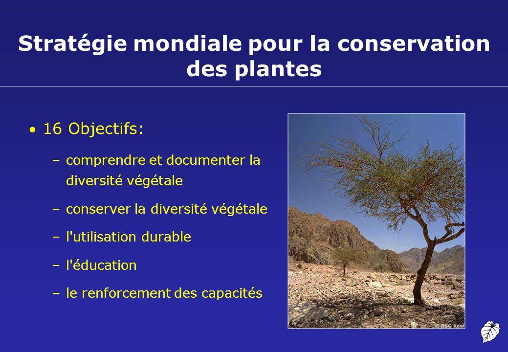 Stratégie mondiale pour la conservation des plantes 16 Objectifs: –comprendre et documenter la diversité végétale –conserver la diversité végétale –l'