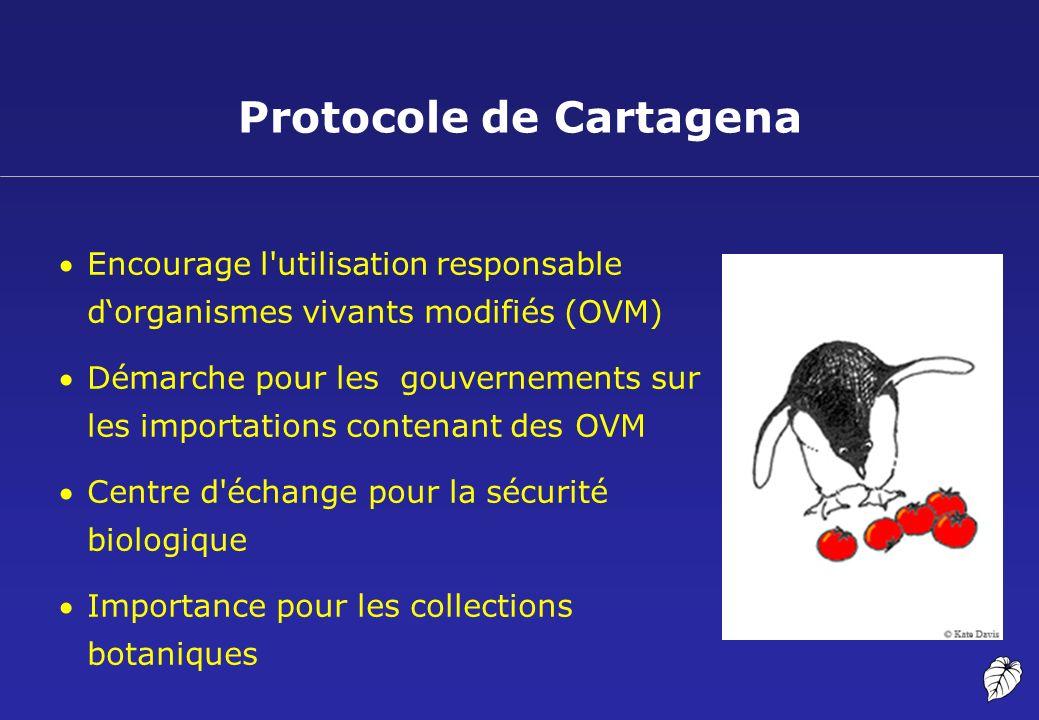 Protocole de Cartagena Encourage l'utilisation responsable dorganismes vivants modifiés (OVM) Démarche pour les gouvernements sur les importations con
