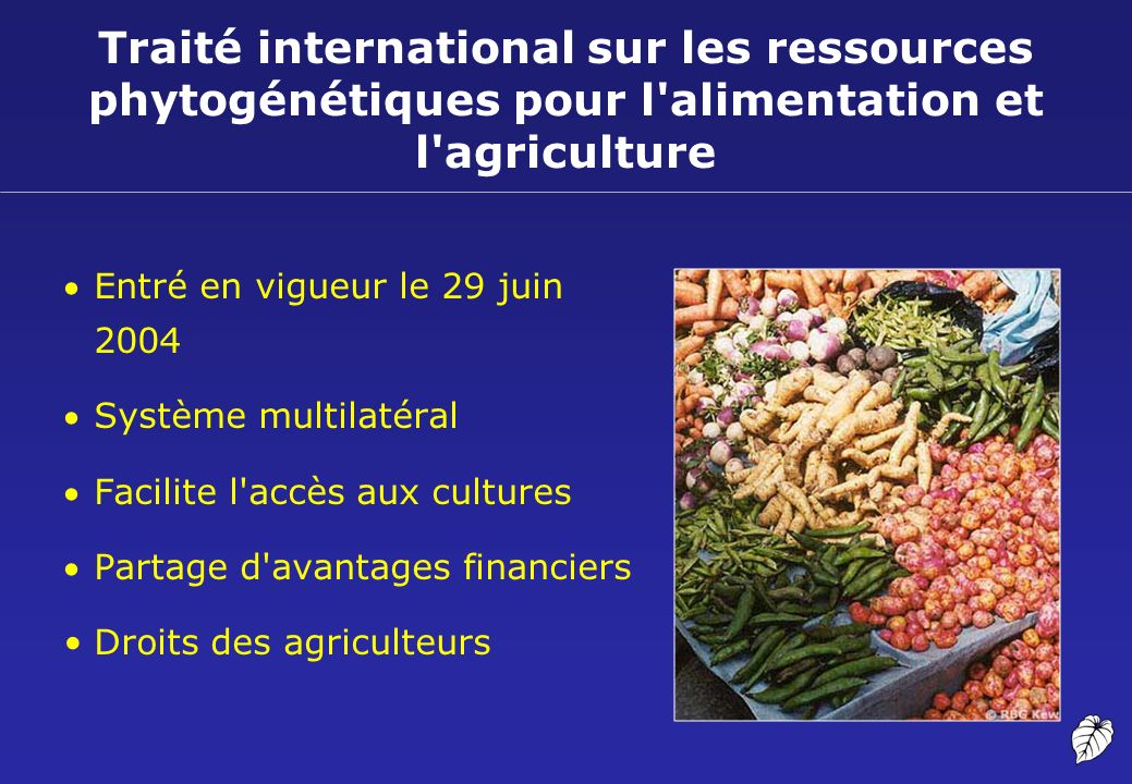 Traité international sur les ressources phytogénétiques pour l'alimentation et l'agriculture Entré en vigueur le 29 juin 2004 Système multilatéral Fac