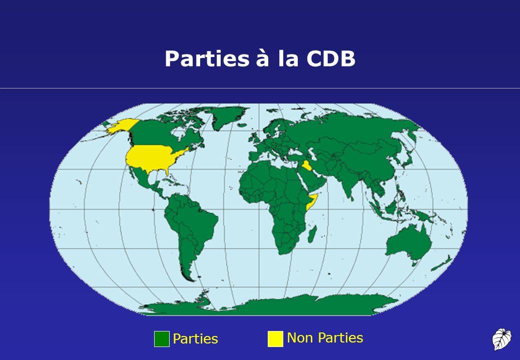 Portée de la CDB: Qu est-ce que la diversité biologique?