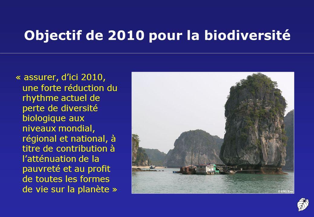 Objectif de 2010 pour la biodiversité « assurer, dici 2010, une forte réduction du rhythme actuel de perte de diversité biologique aux niveaux mondial