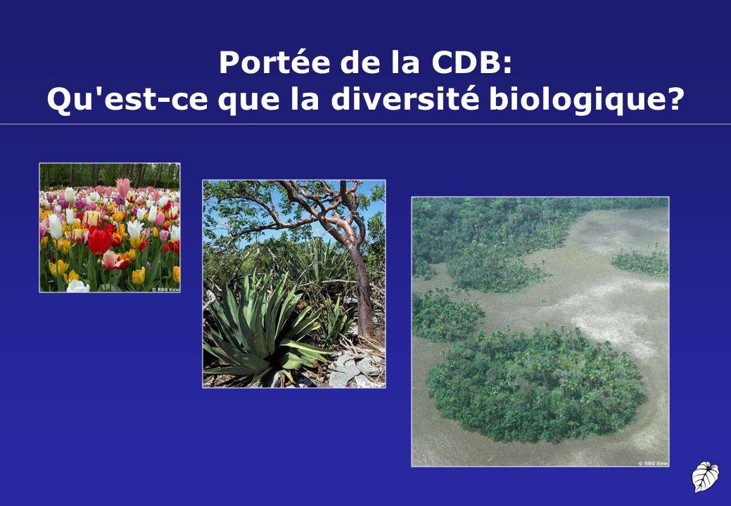 Portée de la CDB: Qu'est-ce que la diversité biologique?