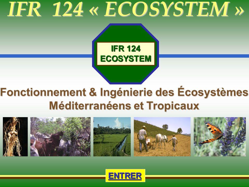 IFR 124 Fonctionnement et Ingénierie des Écosystèmes Méditerranéens & Tropicaux Accueil Présentation de lIFR Thématiques & Stratégies & Stratégies Projets - Opérations Plateforme technique Formations Formations Supérieures & autres Supérieures & autres Information & Animation & Animation Liens Liens Les partenaires de lIFR 124 Ecosystem sont membres d Agropolis Touches actives 12 1_] Dynamique de la disponibilité du phosphore et de lazote dans les systèmes de culture camarguais ; Unités participantes : UMR Innovation, UMR Rhizosphère et Symbiose, 2&3_] Systèmes de production en SCV (systèmes de culture en semis direct avec plantes de couverture) des petits producteurs de l agriculture familiale des Cerrados de Unaï au Brésil ; Unités participantes : UMR Rhizosphère et Symbiose UMR SYSTEM, EMBRAPA Riz et Haricot & Cerrados 4_] Diversité fonctionnelle des ectomycorhizes et le cycle du phosphore seront-ils affectés par laccroissement de la sécheresse dans un écosystème méditerranéen à Chêne vert .