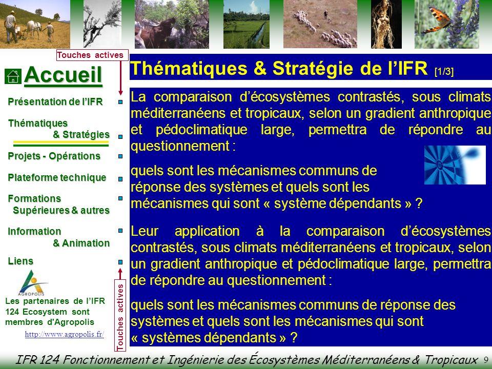 IFR 124 Fonctionnement et Ingénierie des Écosystèmes Méditerranéens & Tropicaux Accueil Présentation de lIFR Thématiques & Stratégies & Stratégies Projets - Opérations Plateforme technique Formations Formations Supérieures & autres Supérieures & autres Information & Animation & Animation Liens Liens Les partenaires de lIFR 124 Ecosystem sont membres d Agropolis Touches actives 10 Le questionnement de lIFR se décline en trois champs (voir à : ) qui interagissent au sein de thématiques de recherche appuyées sur des projets interdisciplinaires.