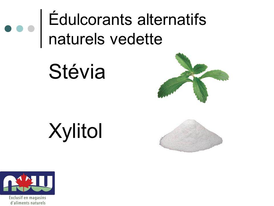 Édulcorants alternatifs naturels vedette Stévia Xylitol