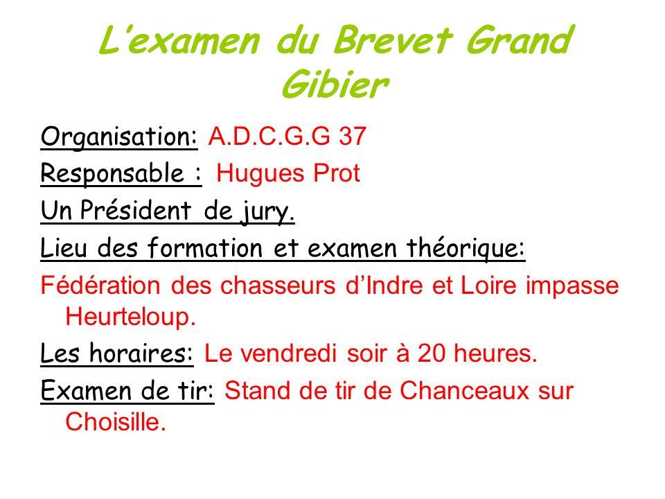 Lexamen du Brevet Grand Gibier Organisation: A.D.C.G.G 37 Responsable : Hugues Prot Un Président de jury. Lieu des formation et examen théorique: Fédé
