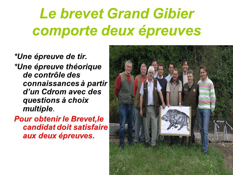 Lexamen du Brevet Grand Gibier Organisation: A.D.C.G.G 37 Responsable : Hugues Prot Un Président de jury.