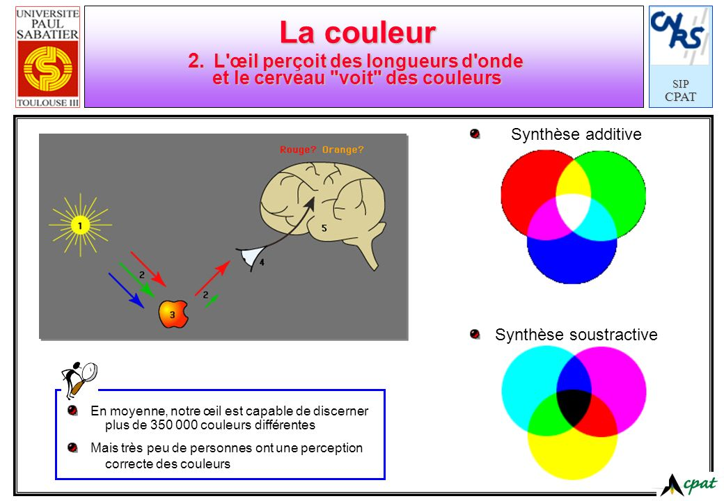 SIPCPAT La couleur 2. L'œil perçoit des longueurs d'onde et le cerveau