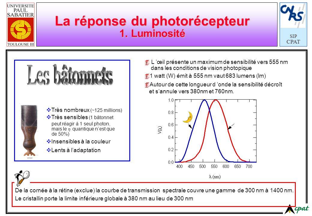SIPCPAT Sources de lumière Quelques ordres de grandeur Sources primaires Soleil Lampe à incandescence 100 claire Lampe à incandescence 100 dépolie Lampe fluorescente 40W (T12) Bougie stéarique Sources secondaires Lune Papier banc ( =0,8) Papier gris ( =0,4) Papier noir ( =0,04) 165 000 x10 4 600 x10 4 125 x10 3 7 x10 3 5 x10 3 2,5 - 3 x10 3 100 50 5 Eclairées avec une lampe de 100 W équipé d un diffuseur en verre opalin (Ø38) Eclairement 400 lx Luminance (cd/m 2 ) La luminance minimum susceptible d impressionner l œil est de : 10 -9 cd/cm 2