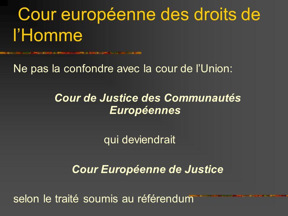 Cour européenne des droits de lHomme Ne pas la confondre avec la cour de lUnion: Cour de Justice des Communautés Européennes qui deviendrait Cour Euro