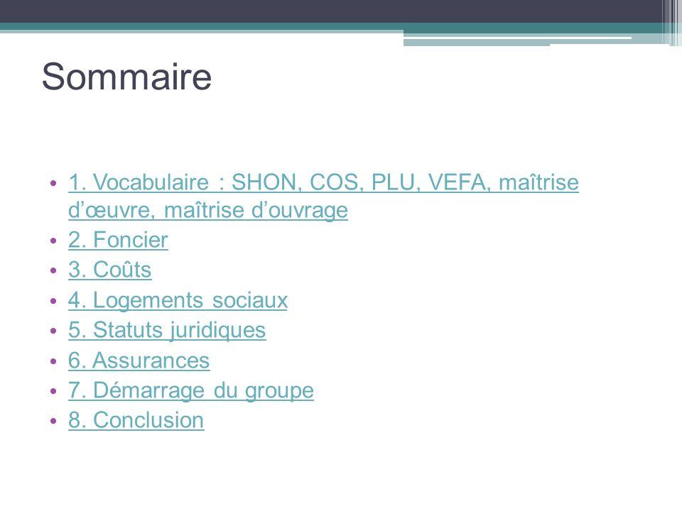 Sommaire 1. Vocabulaire : SHON, COS, PLU, VEFA, maîtrise dœuvre, maîtrise douvrage 1. Vocabulaire : SHON, COS, PLU, VEFA, maîtrise dœuvre, maîtrise do