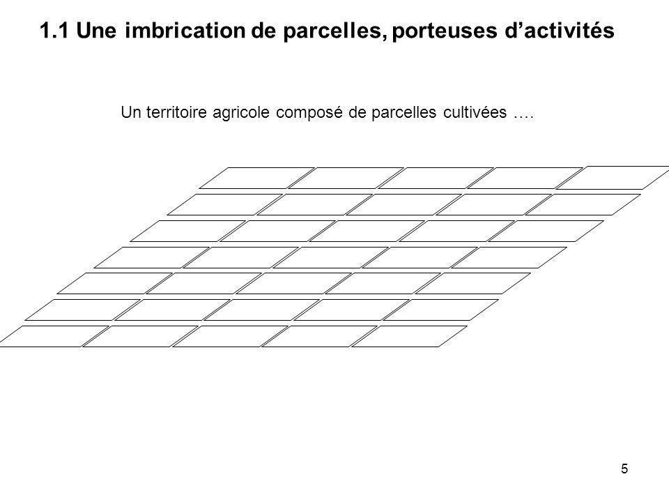 Un territoire agricole composé de parcelles cultivées … 1.1 Une imbrication de parcelles, porteuses dactivités 6