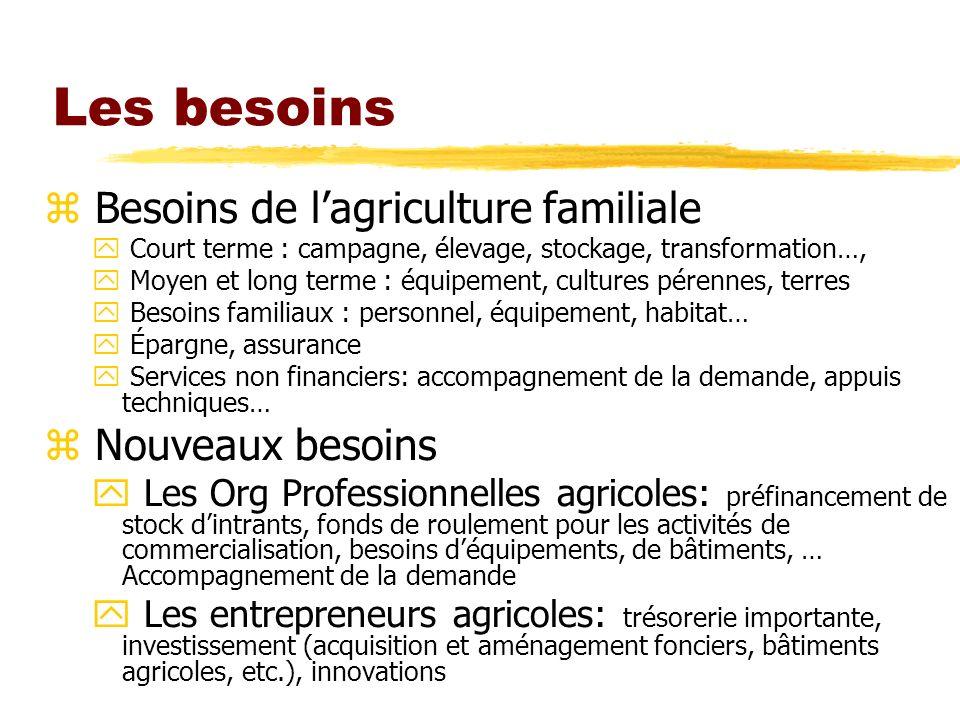 Les besoins z Besoins de lagriculture familiale y Court terme : campagne, élevage, stockage, transformation…, y Moyen et long terme : équipement, cult