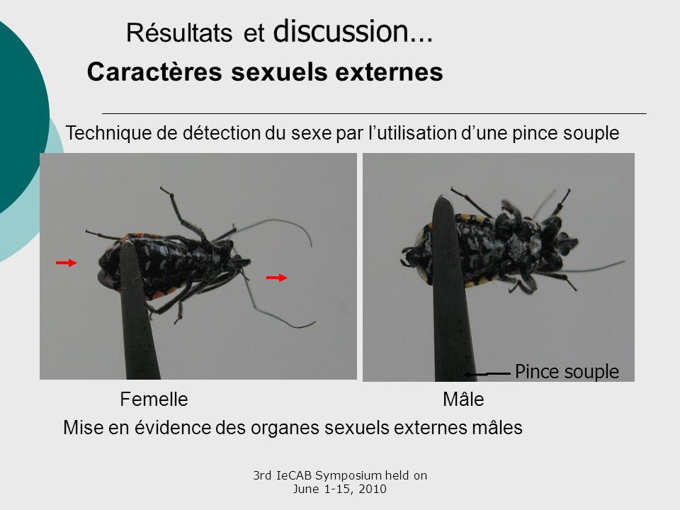 3rd IeCAB Symposium held on June 1-15, 2010 Caractères sexuels externes MâleFemelle Pince souple Technique de détection du sexe par lutilisation dune