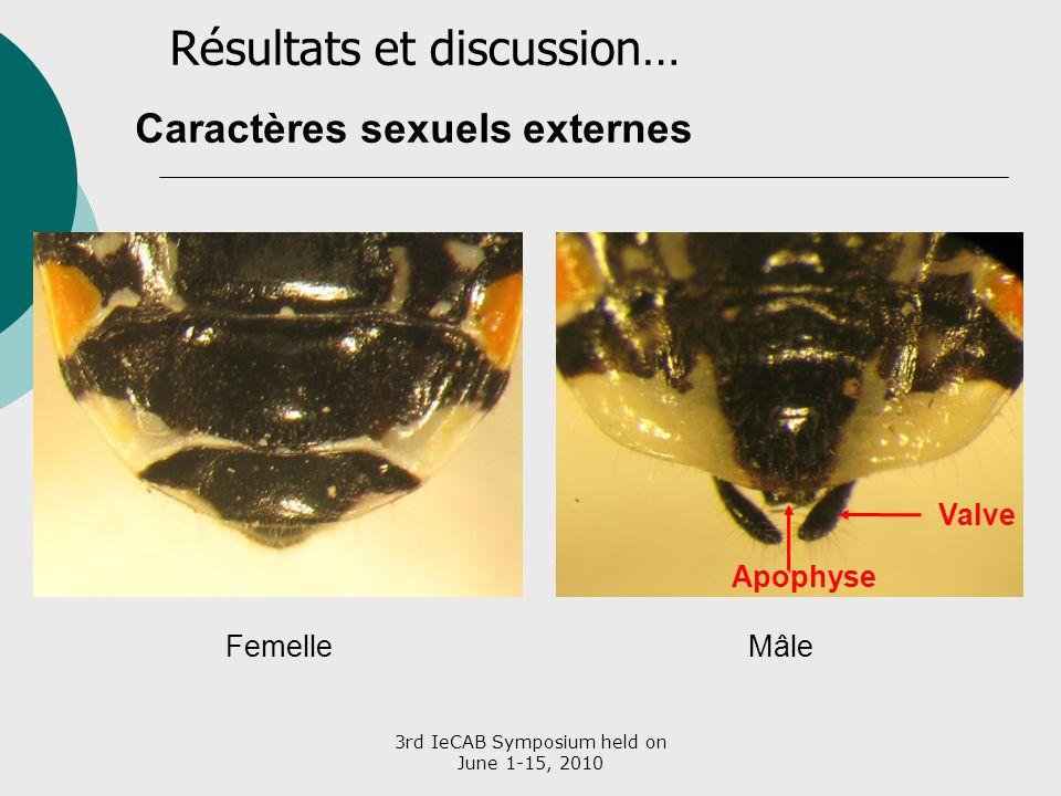 3rd IeCAB Symposium held on June 1-15, 2010 Caractères sexuels externes MâleFemelle Apophyse Valve Résultats et discussion…