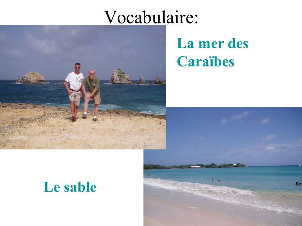 Vocabulaire: Le sable La mer des Caraïbes