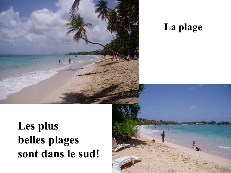 La plage Les plus belles plages sont dans le sud!