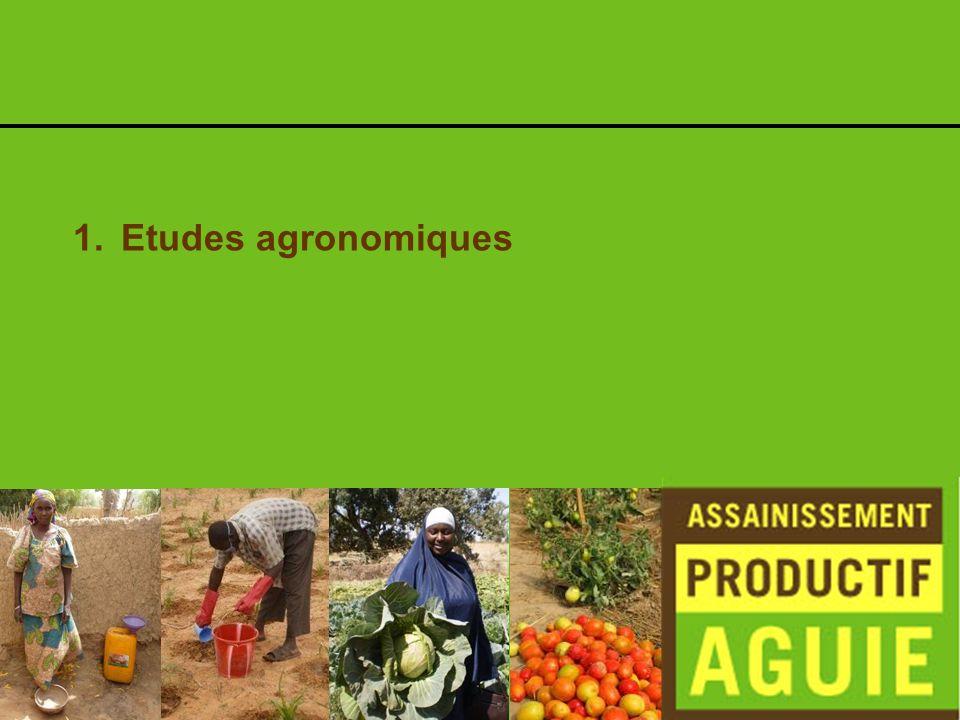 Ilyas : Application au champ de Takin Ruwa pendant la saison sèche
