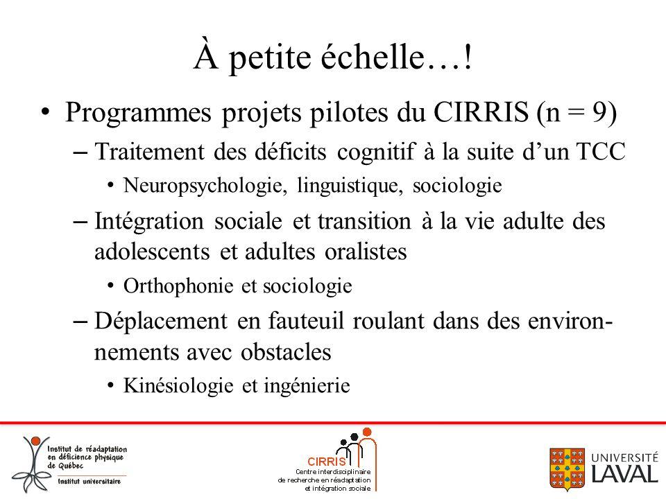 À petite échelle…! Programmes projets pilotes du CIRRIS (n = 9) – Traitement des déficits cognitif à la suite dun TCC Neuropsychologie, linguistique,
