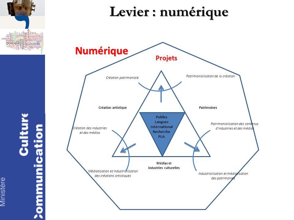 Levier : numérique Numérique Projets Création artistiquePatrimoines Médias et industries culturelles Industrialisation et médiatisation des patrimoine