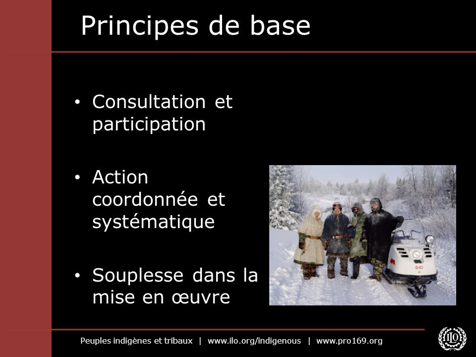 Peuples indigènes et tribaux | www.ilo.org/indigenous | www.pro169.org Principes de base Consultation et participation Action coordonnée et systématiq