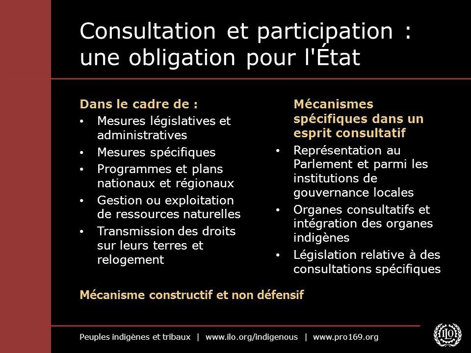 Peuples indigènes et tribaux | www.ilo.org/indigenous | www.pro169.org Consultation et participation : une obligation pour l'État Mécanismes spécifiqu