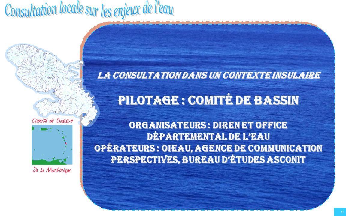 La consultation dans un contexte insulaire Pilotage : comité de bassin Organisateurs : DIREN et Office Départemental de lEau Opérateurs : OIEAU, agenc