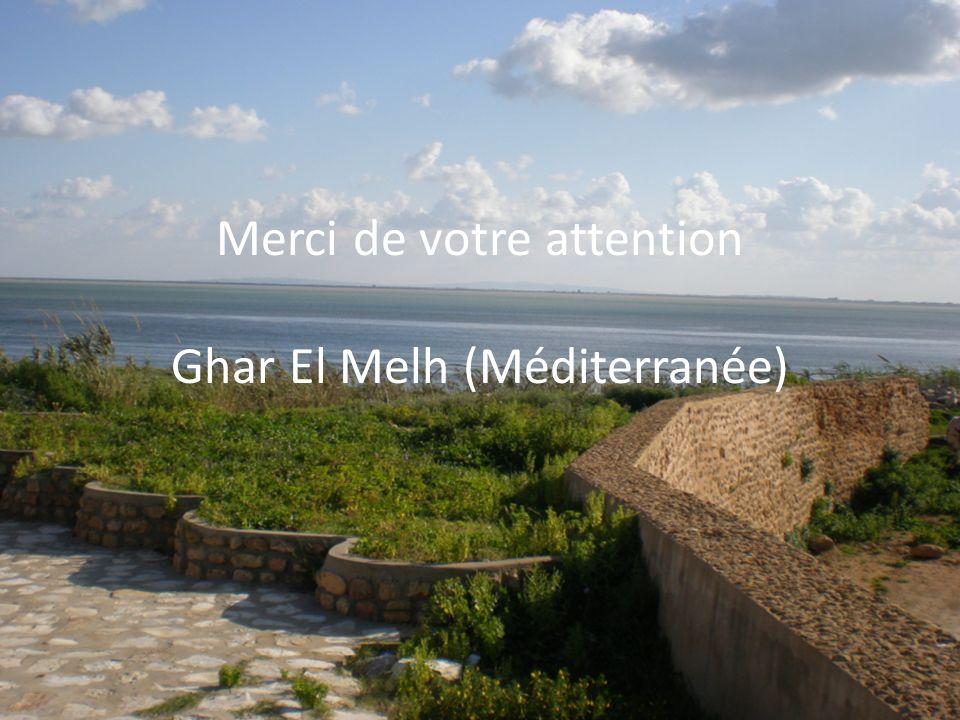 22 Merci de votre attention Ghar El Melh (Méditerranée)