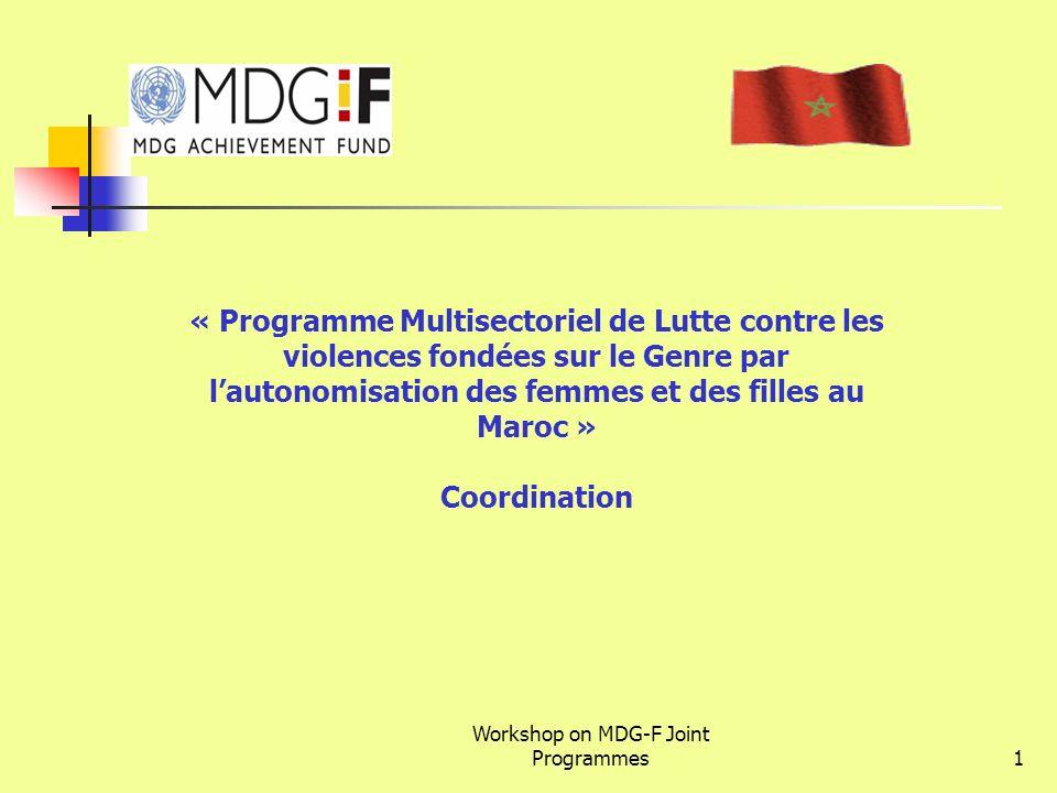 Workshop on MDG-F Joint Programmes1 « Programme Multisectoriel de Lutte contre les violences fondées sur le Genre par lautonomisation des femmes et de
