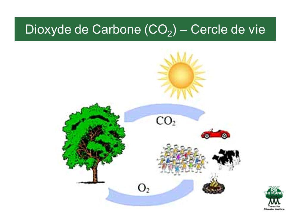 Dioxyde de Carbone (CO 2 ) – Cercle de vie
