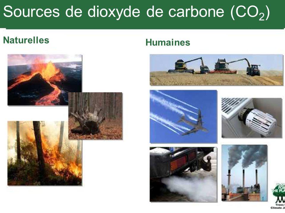 Sources de dioxyde de carbone (CO 2 ) Naturelles Humaines