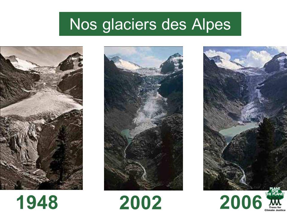 19482002 2006 Nos glaciers des Alpes