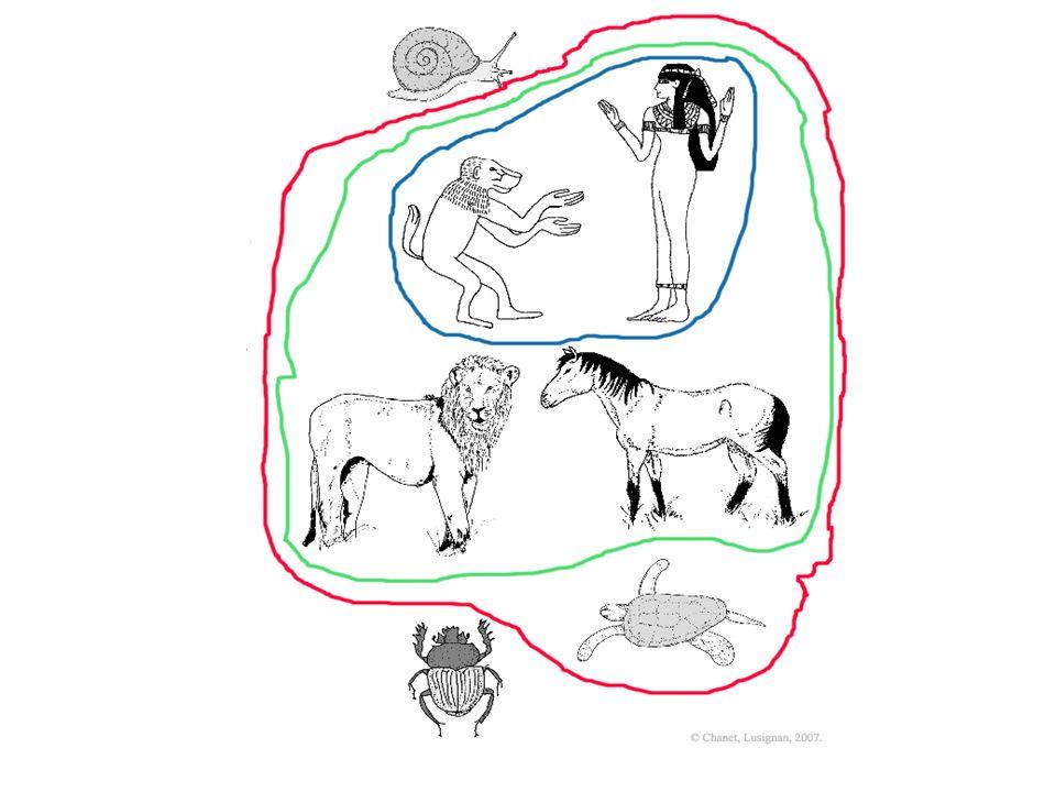Ancêtre commun ayant 4 membres Ancêtre commun ayant des poils Ancêtre commun ayant une main Tétrapodes Mammifères Primates Ce branchement multiple, ou polytomie, reflète l incertitude des relations entre ces espèces de mammifères au vu des caractères utilisès : on ne peut savoir ici si le lion est plus apparenté au cheval ou au groupe des primates, babouin et femme.