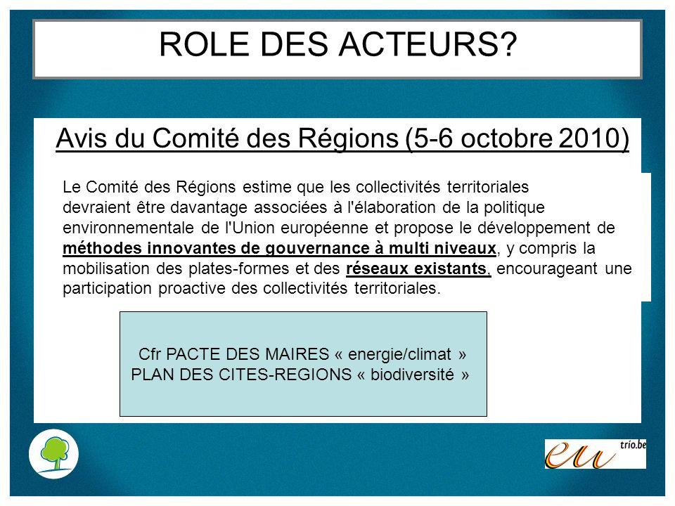 ROLE DES ACTEURS? Avis du Comité des Régions (5-6 octobre 2010) Le Comité des Régions estime que les collectivités territoriales devraient être davant