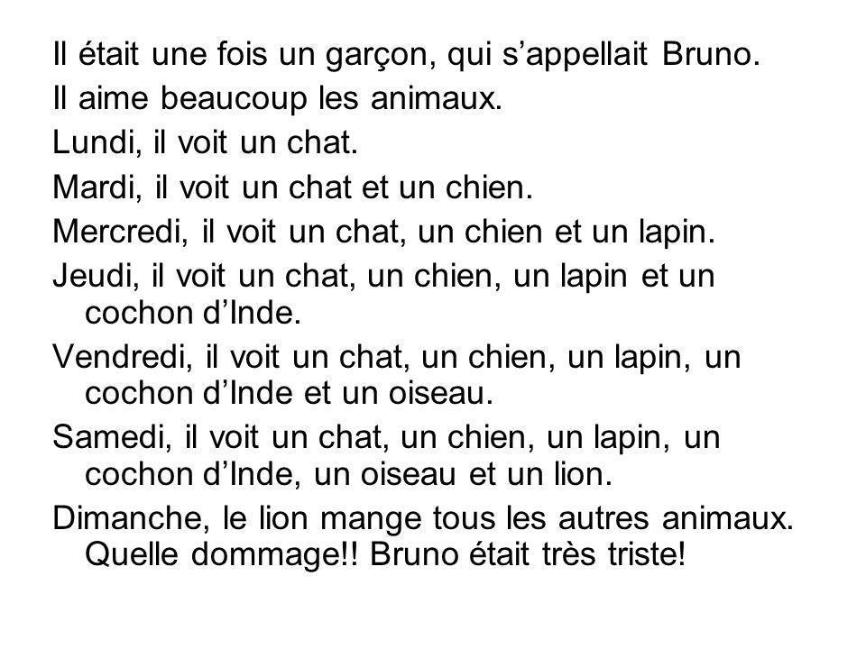 Il était une fois un garçon, qui sappellait Bruno. Il aime beaucoup les animaux. Lundi, il voit un chat. Mardi, il voit un chat et un chien. Mercredi,