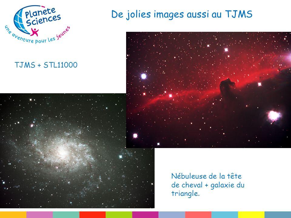 De jolies images aussi au TJMS TJMS + STL11000 Nébuleuse de la tête de cheval + galaxie du triangle.