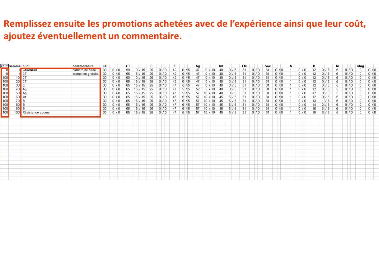 Remplissez ensuite les promotions achetées avec de lexpérience ainsi que leur coût, ajoutez éventuellement un commentaire.