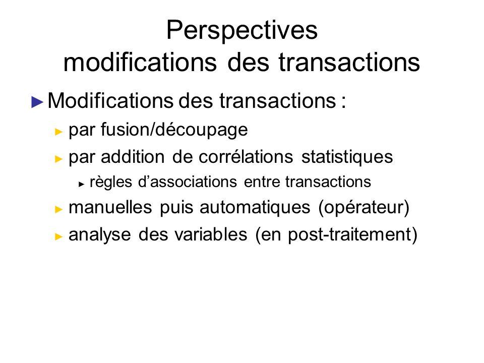 Perspectives modifications des transactions Modifications des transactions : par fusion/découpage par addition de corrélations statistiques règles das