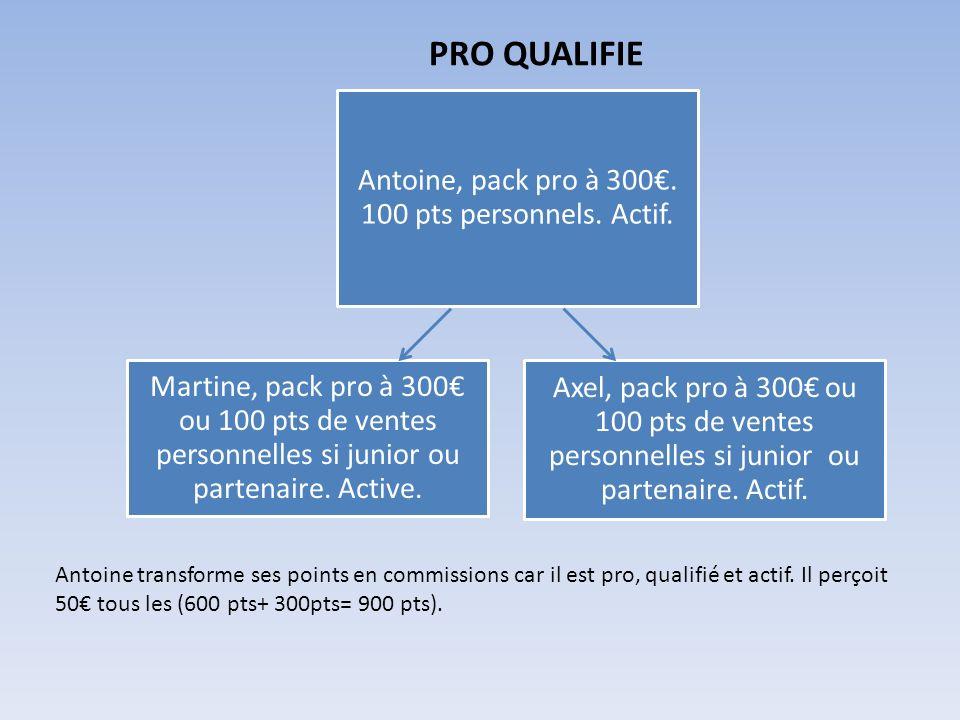 PRO QUALIFIE Martine, pack pro à 300 ou 100 pts de ventes personnelles si junior ou partenaire. Active. Axel, pack pro à 300 ou 100 pts de ventes pers