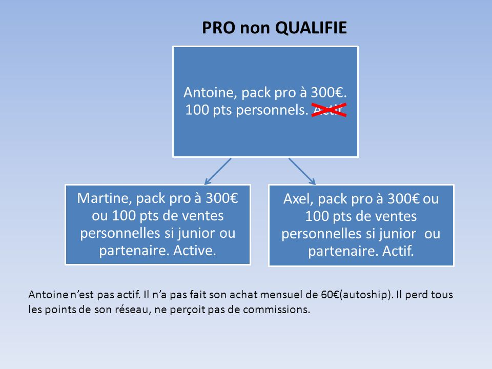 PRO non QUALIFIE Martine, pack pro à 300 ou 100 pts de ventes personnelles si junior ou partenaire. Active. Axel, pack pro à 300 ou 100 pts de ventes